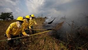 Mehr Zusammenhalt im Kampf gegen das Feuer