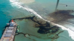 """""""Schlimmstes ökologisches Desaster"""" auf Mauritius"""