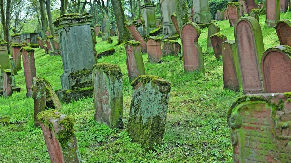 Wer einen Gottesacker anlegt, der bleibt: Der jüdische Friedhof von Mainz ist der größte des Mittelalters im aschkenasischen Kulturkreis