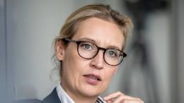 Weidel: FDP kann sich bei Migration gerne mit uns abstimmen