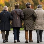 Senioren am Bodensee im November 2014