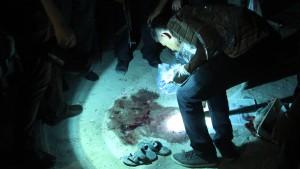 Acht Tote bei Raketenangriffen auf dem Sinai