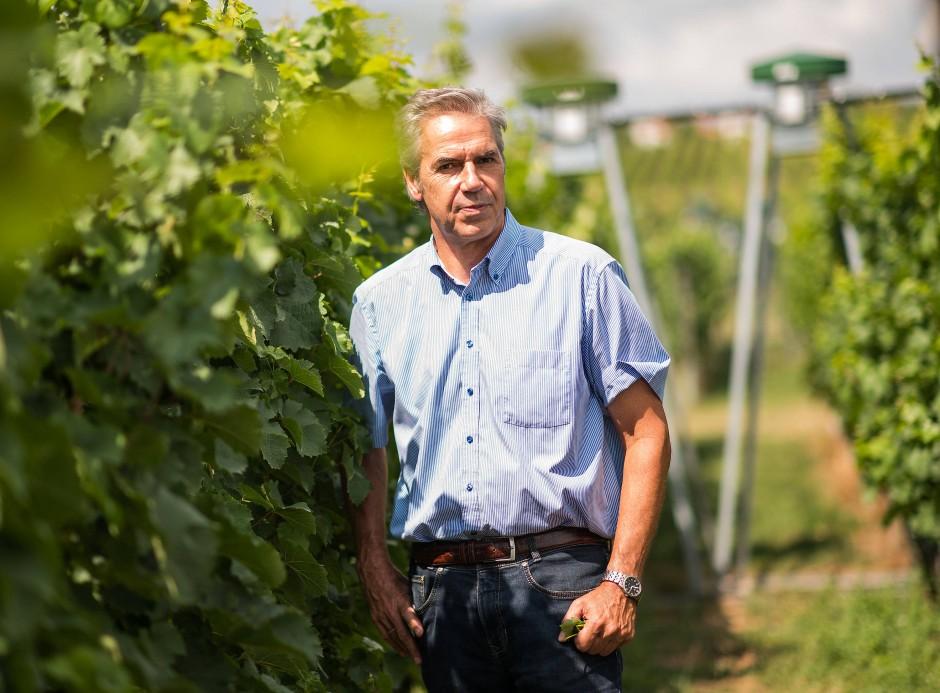 """Setzt auf einen Schub für den Fachbereich Weinbau: Hochschulpräsident Hans Reiner Schultz hofft, im zweiten Anlauf mit dem Antrag auf Finanzierung eines 30 Millionen Euro teuren """"Forschungsbaus"""" erfolgreich zu sein"""