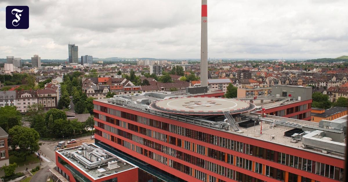 Rhein main partnersuche