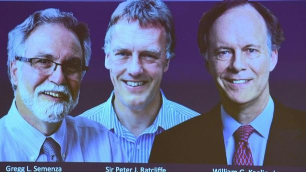 Medizinnobelpreis geht an Zellforscher