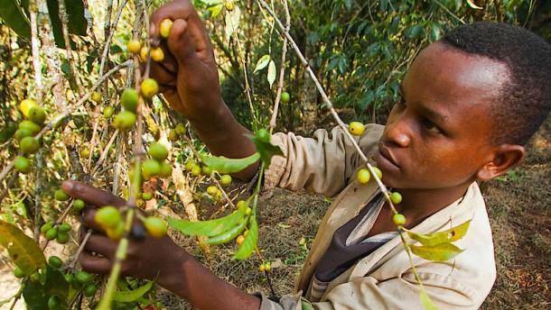 Kaffee rösten können die Äthiopier selbst