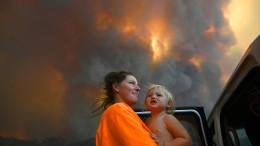 Buschbrände in Australien wüten weiter