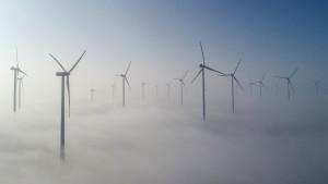 So steigert der Greta-Effekt die Ökostrom-Nachfrage