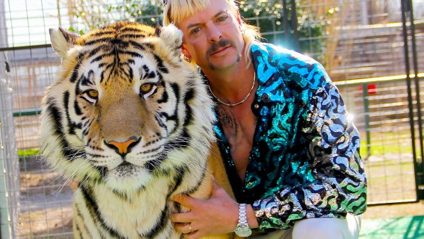 US-Justiz beschlagnahmt 68 Löwen und Tiger