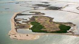 Fünf künstliche Inseln für mehr Biodiversität