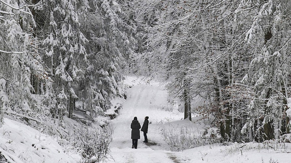Winterparadies: Spaziergänger nahe des hessischen Kiedrich in der weißen Landschaft