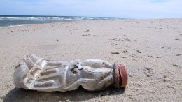 Das Plastik der Meere auf den Schultern