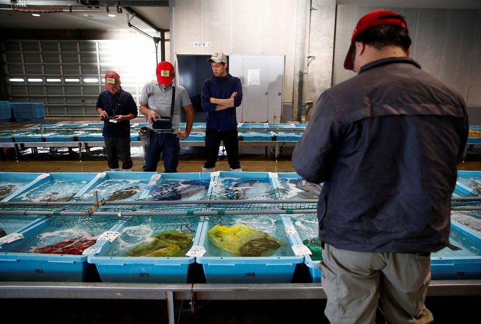 Fischkäufer inspizieren die Qualität des heutigen Fangs.