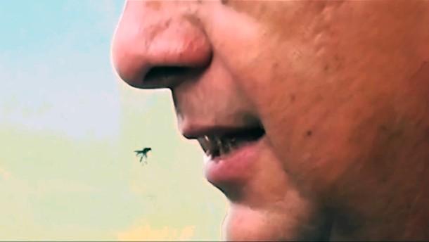 Costa Ricas Präsident verschluckt Wespe