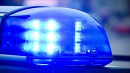 Elfjähriger schlägt Einbrecher mit Machete in die Flucht