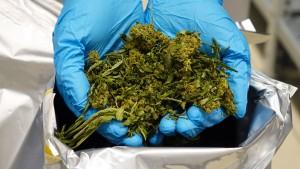 Wie Deutschland auf das Cannabis warten muss