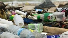 Weber will Einwegplastik auf der ganzen Welt verbieten