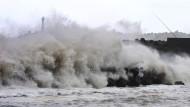 Taifun trifft japanische Hauptinsel