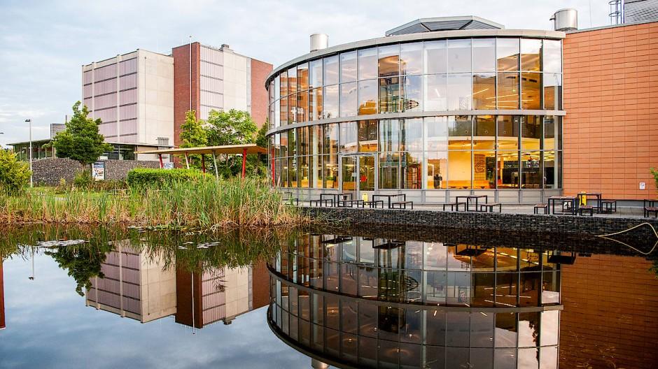 Im Teich auf dem Mainova Campus sind Sensoren, die den Wasserstand messen.
