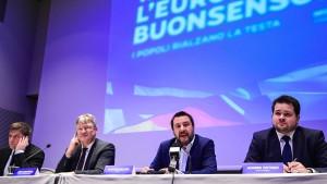 AfD und Lega bilden gemeinsame Fraktion im EU-Parlament
