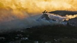 Waldbrände auf griechischer Insel Samos