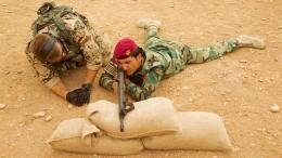 Bundeswehr setzt Ausbildung der Peschmerga fort
