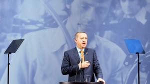 Nicht Erdogan allein