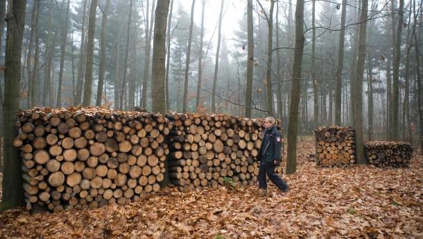 Brennholzsammler - Tina Baumann bezieht ihr Holz für den Kamin aus dem Frankfurter Stadtwald. Sie ist Selbstwerberin und gleichzeitig stellvertretende Abteilungsleiterin des Stadtforsts.