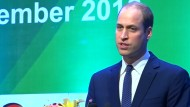 Prinz William kämpft gegen illegalen Handel mit Tieren