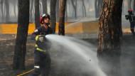 Waldbrand wütet in Naturschutzgebiet in Spanien