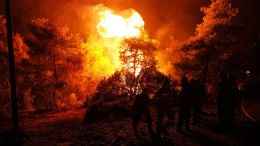 """""""Das ganze Dorf steht in Flammen, es ist eine Schande"""""""