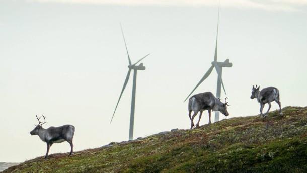 Oberstes Gericht in Norwegen erklärt zwei Windparks für unzulässig