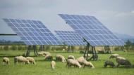 Deutschland bringt seine Solar-Zuschüsse vor Gericht