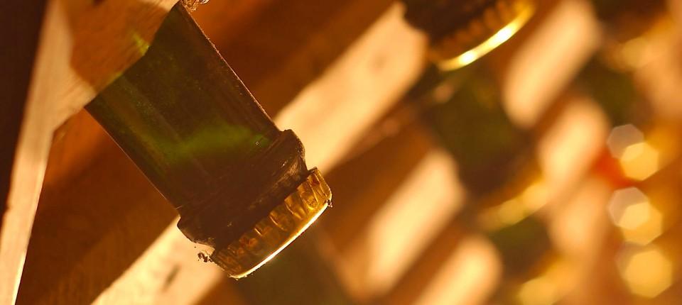 Sektflaschen des Guts im Rüttelbrett – das Rütteln dient dem mechanischen Klären des Sekts bei der Flaschengärung.