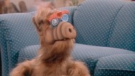 """""""Außerirdische Lebens Form"""" Alf: Hinter der Maske steckte zumindest bei den Ganzkörperaufnahmen Michu Meszaros."""
