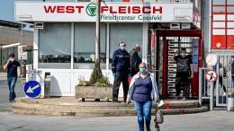 Westfleisch will in Coesfeld wieder schlachten