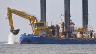 Naturschützer klagen gegen Nord Stream 2