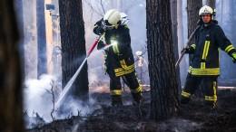 Großer Waldbrand nördlich von Berlin