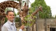 Neue Heimat: Zoodirektor Miguel Casares wünscht sich ein neues, vielleicht sogar gemeinsames Refugium für Zebras und Giraffen.