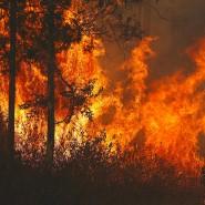 Die Feuersaison begann 2019 früh: Schon im September loderten einzelne Brandherde. Damals bestand noch Hoffnung, sie schnell zu löschen.