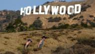 Mit einer Seilbahn zum Hollywood-Wahrzeichen?