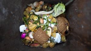 13 Millionen Tonnen Lebensmittel für die Tonne