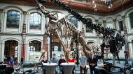 """Vier""""Fridays For Future"""" Aktivisten zusammen mit Moderator Tom Patzelt und dem Generaldirektor des Naturkundemuseums, Johanes Vogel, am Montag auf einer Pressekonferenz im Naturkundemuseum in Berlin."""