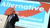 2015 war von einer Spaltung seiner Partei keine Rede. Nun gründete der AfD-Chef Jörg Meuthen eine neue Fraktion, deren Zukunft juristisch unklar ist.
