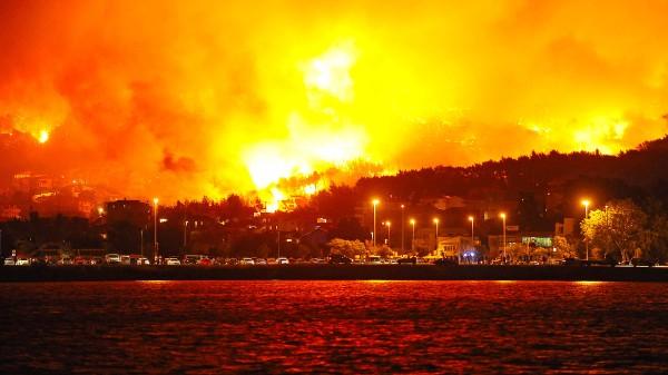 Waldbrand in Portugal:...