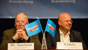 AfD macht SPD vor Landtagswahl zum Hauptgegner