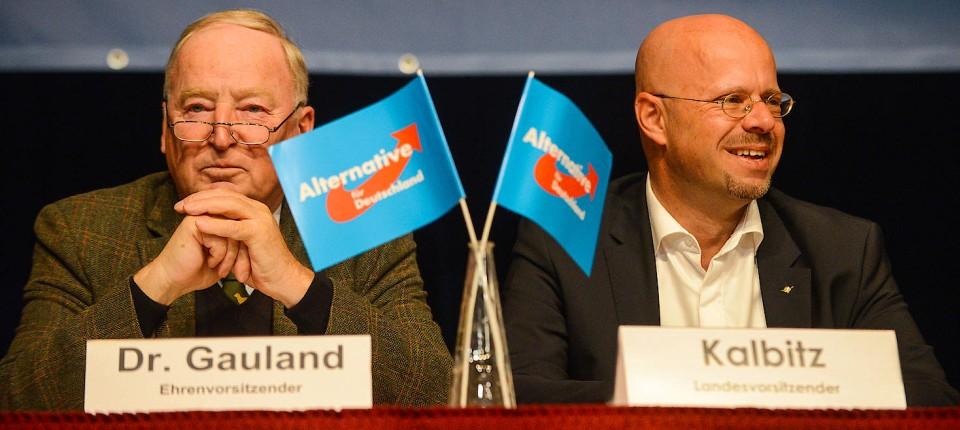Der AfD-Bundesvorsitzende Alexander Gauland und Andreas Kalbitz, Landeschef der brandenburgischen AfD
