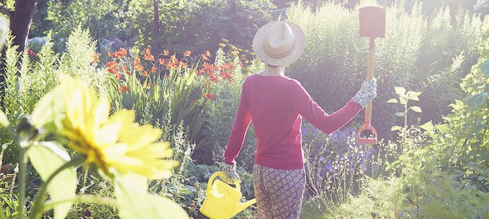 Sauzahn Hochbeet Rosenlaube Sechs Lieblingsstucke Fur Den Garten