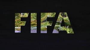 Fifa-Skandal zwischen Fakt und Spekulation