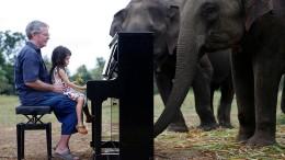 Ein Konzert nur für Elefanten